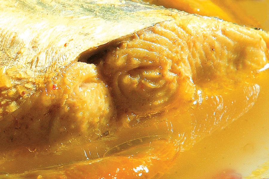 Ikan Parang Masak Pindang